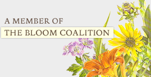 Bloom Coalition Logo